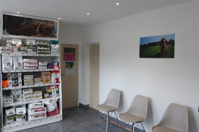 http://www.clinique-veterinaire-churchill.com/wp-content/uploads/2017/07/20180820_150921-400x265.jpg